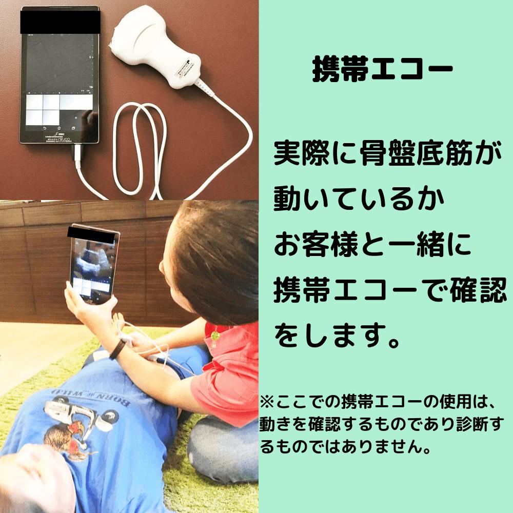 携帯エコーでの確認方法
